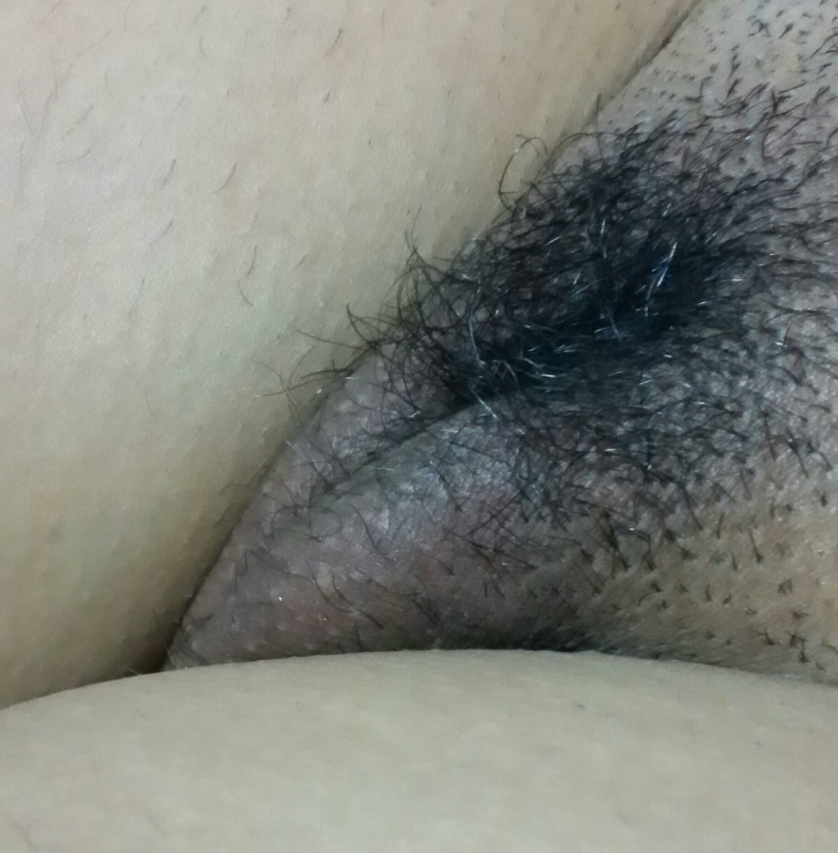 Esposa gravida